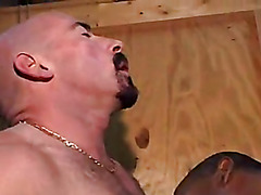 This ebony hunk gets down on his knees and sucks a big hard white cock.