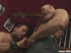 Kinky gay muscle guys suck