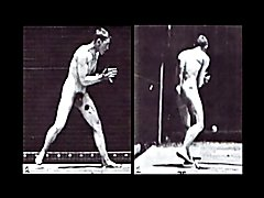 Muybridge's Male Nude Locomotion
