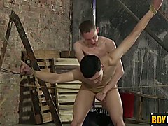 Ashton loves drilling Luke tight anal after steamy blowjob  scene 2